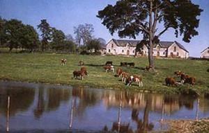 La ferme des Rues à Chenillé-Changé dans la Mayenne.