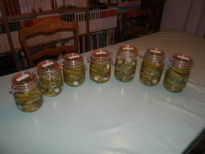 Une partie de la collection 2009 : 4 kg !
