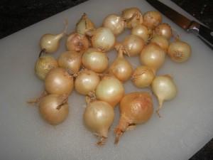 Oignons grelots.