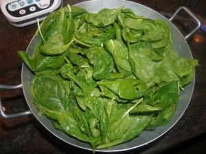 Les petites feuilles d'épinard frais !