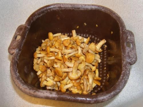 Escalopes de veau et girolles la cr me la recette du for En cuisine qu est ce qu une girolles